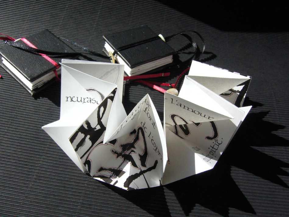 Livres calligraphiés
